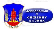 Opština Bojnik